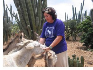 Desiree Eldering cares for and feeds the donkeys