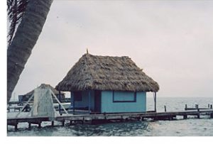 Thatched roof on the boathouse Belize