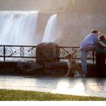 Ontario's Niagara Falls Still Exudes Romance