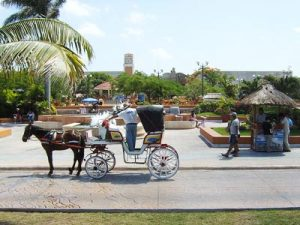 Horse-drawn carriage in Cozumel, Yucatan
